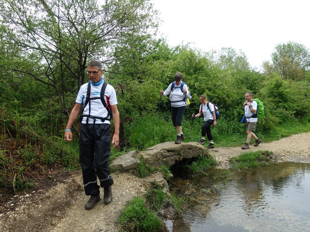 Camino Frances wandelen
