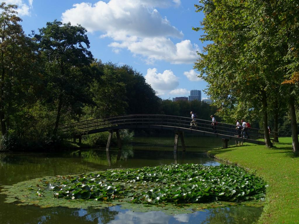11 Wandelbrug in het Haagse Bos