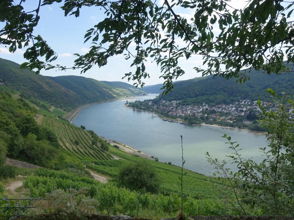 Doorkijkje Rheinsteig