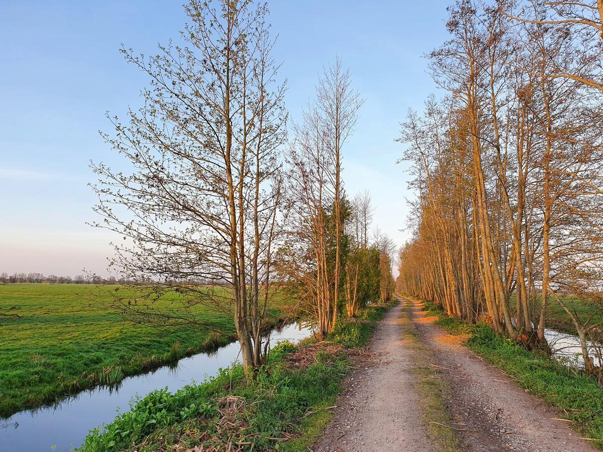 Oude kade wandeling Montfoort
