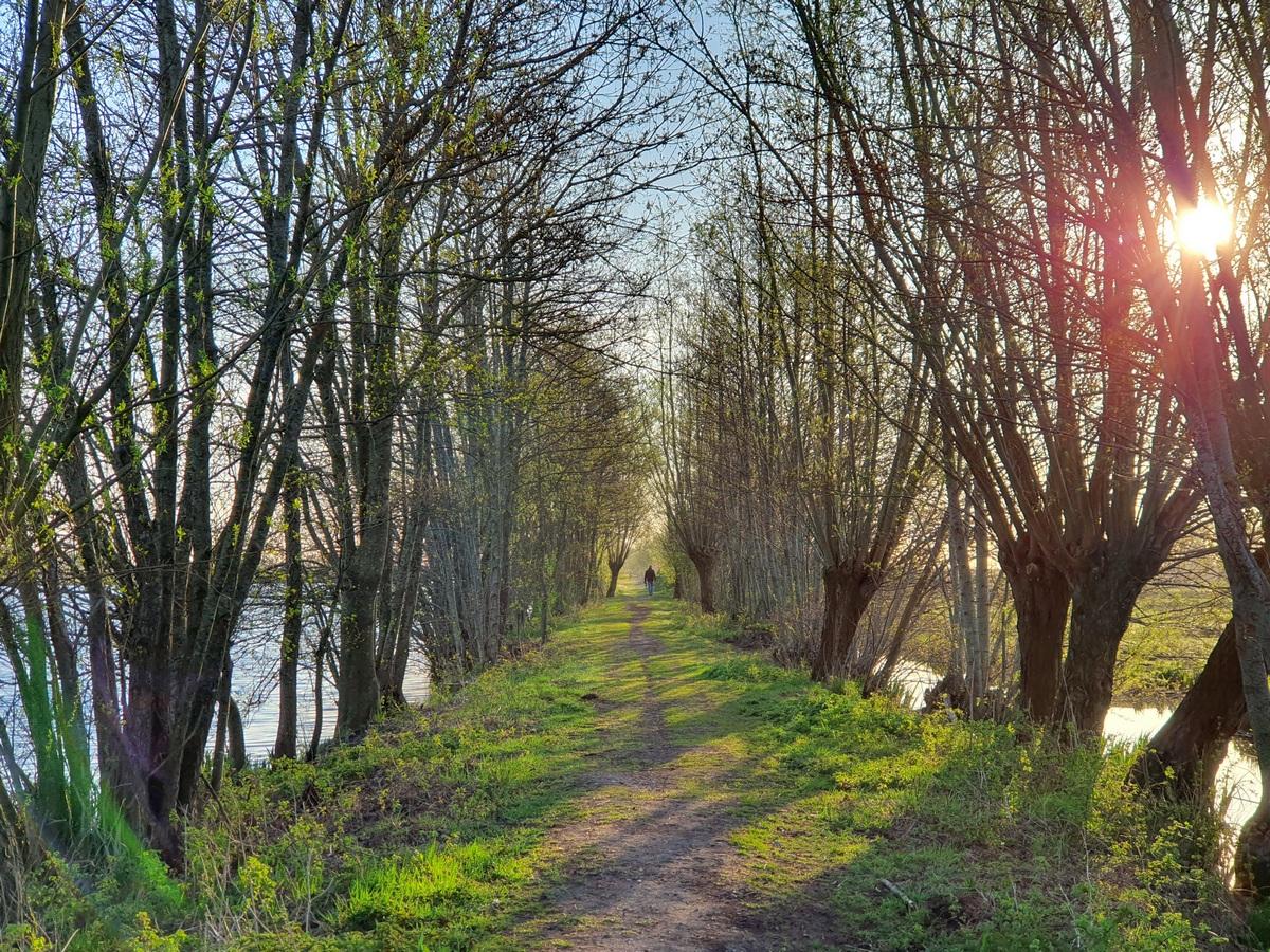 Wandelen in Montfoort