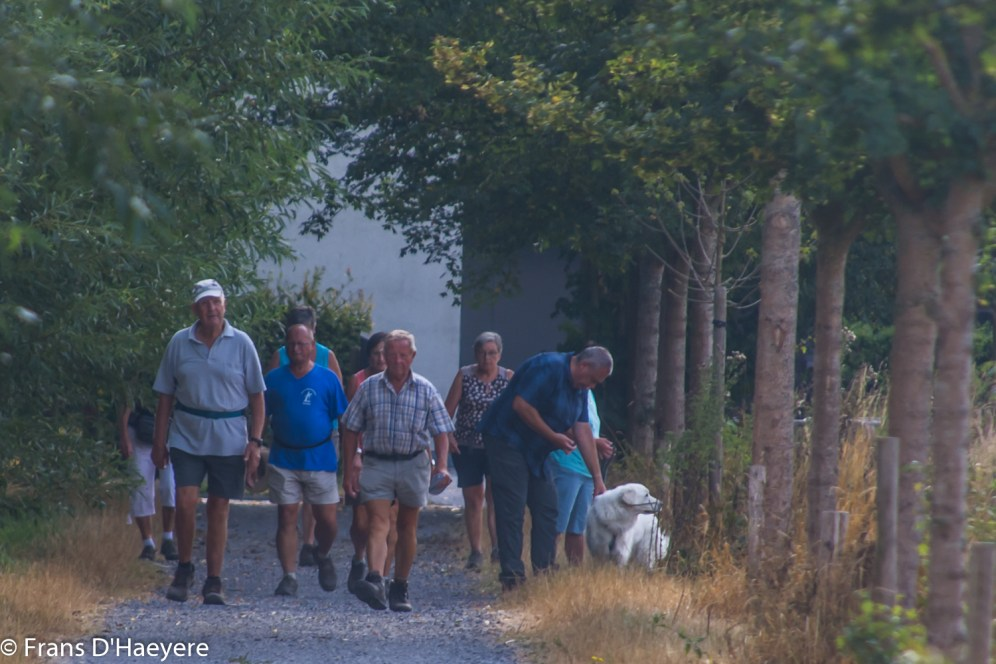 2018-08-05 Vinderhoute-148