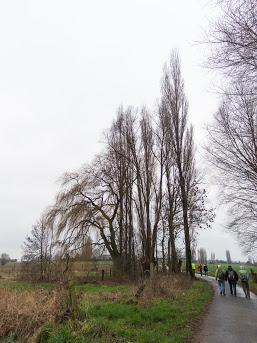 2019-01-05 Hooglede-13