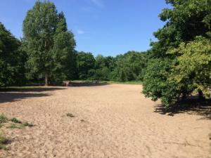Zandvlakte Scheveningse Bosjes