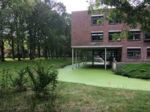School met palen in het water