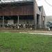Rondwandeling Montfoort Linschoten Oudewater