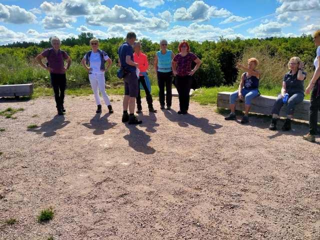 Wandelen in het Kotterbos Flevoland