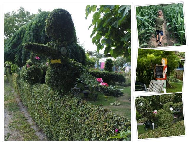Mooi buxus tuintjes in Sint-Pieters-Kapelle