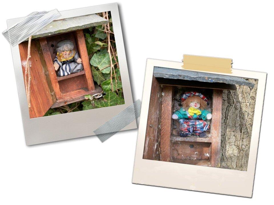 Op deze afbeelding zie je de geocache clowntjes die we gevonden hebben in het Berchembos