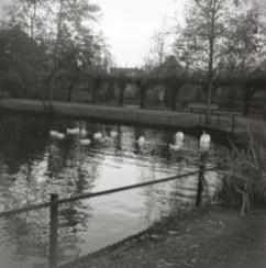bron: Streekarchief Langstraat Heusden Altena, objectnr WAA83697. Fotograaf J. de Bont, Waalwijk