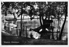 bron: Streekarchief Langstraat Heusden Altena, objectnr WAA83699. Fotograaf J. de Bont, Waalwijk