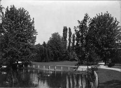 bron: Streekarchief Langstraat Heusden Altena, objectnr WAA70900