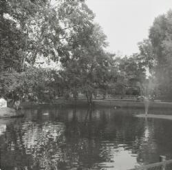 bron: Streekarchief Langstraat Heusden Altena, objectnr WAA83698, Fotograaf J. de Bont, Waalwijk