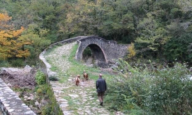 Heerlijke dagwandelingen door heuvels en rivierdalen over uitgezette paden.