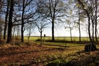 Drouwenerveld