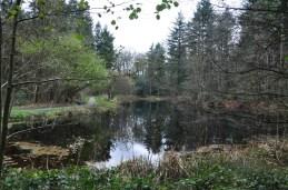 Wandelen in Drenthe -Echten