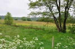 Friesland: Beetsterzwaag
