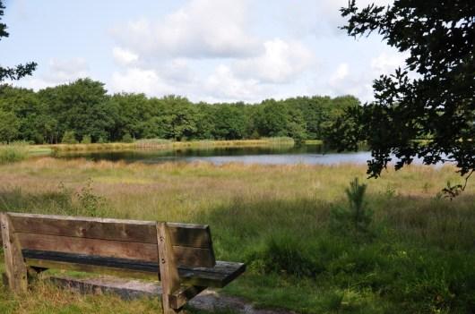Drenthe: Kampsheide 10 KM
