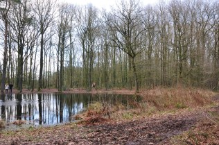 Groningen Appélbergen