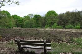 Wandelbankje Mei 2017 Exloo Drenthe