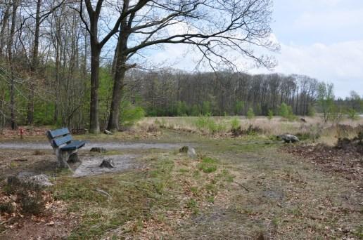 Wandelbankje Mei 2017 Elp Drenthe