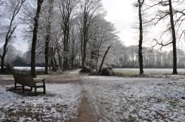 Wandelbankje Januari 2017 Haren
