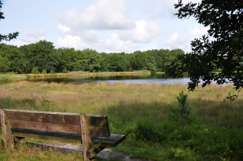 Wandelbankje Augustus 2017 Kamspheide Drenthe
