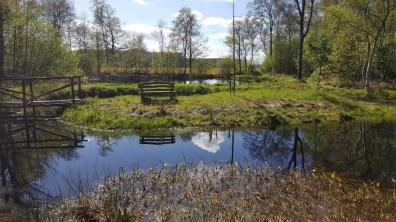 Wandelbankje Mei 2017 Kop van Overijssel