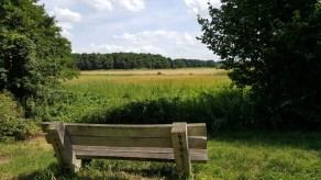 Wandelbankje Juli 2017 Reestdal Drenthe