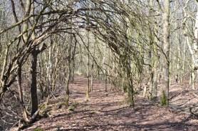 Heerenveen Oranjewoud