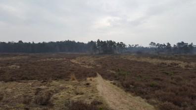 LAW Zuiderzeepad Nunspeet-Harderwijk