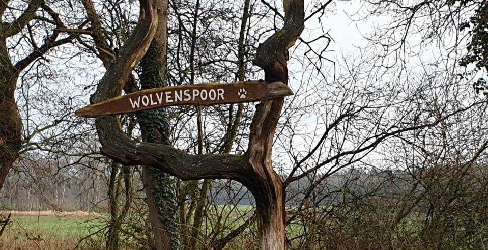 Wandelroute Wolvenspoor Schoonloo