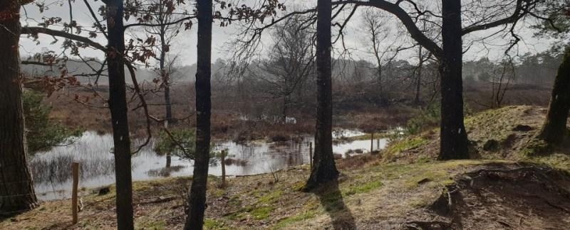 Wandelroute Bakkeveen
