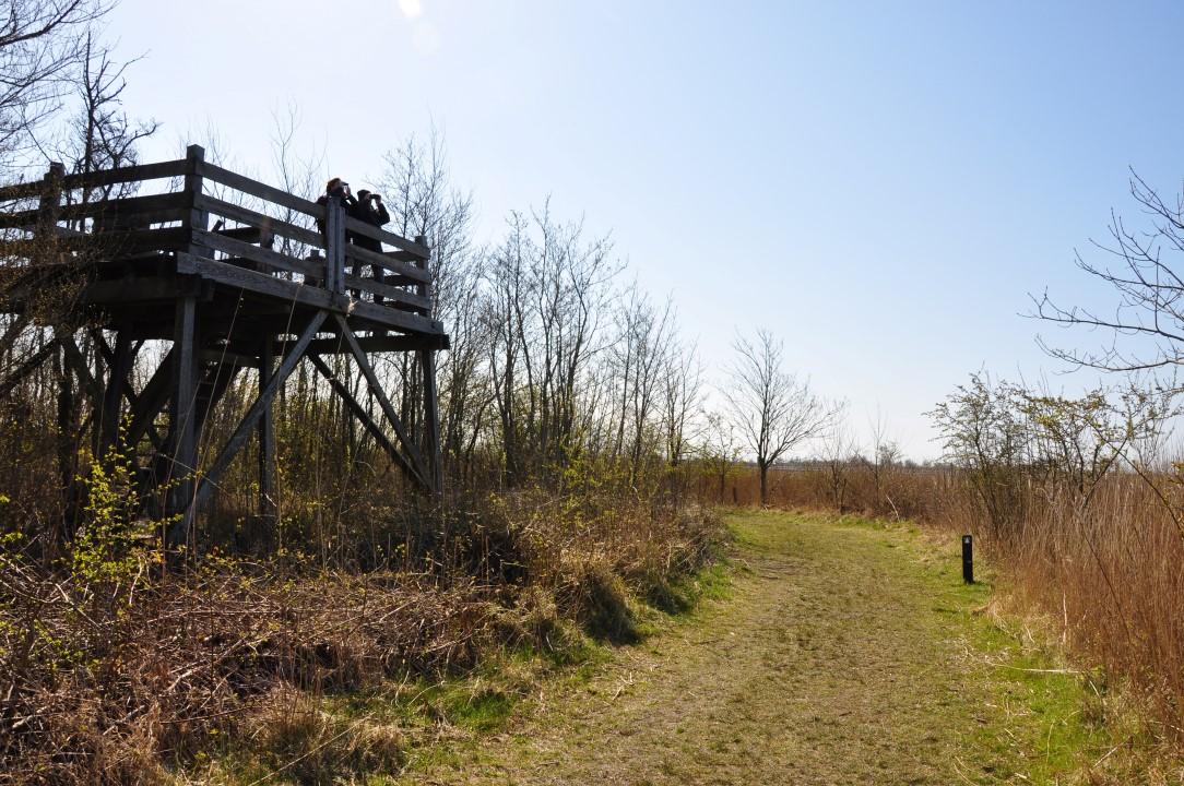 Uitkijktoren Lauwersmeer
