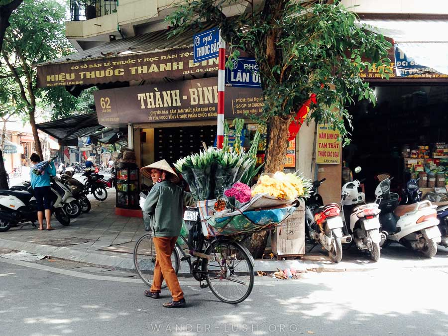 Everything you need to know about visiting Quang Ba Flower Market and Long Bien Market—two of Hanoi's coolest, most authentic attractions! | © Emily Lush 2018