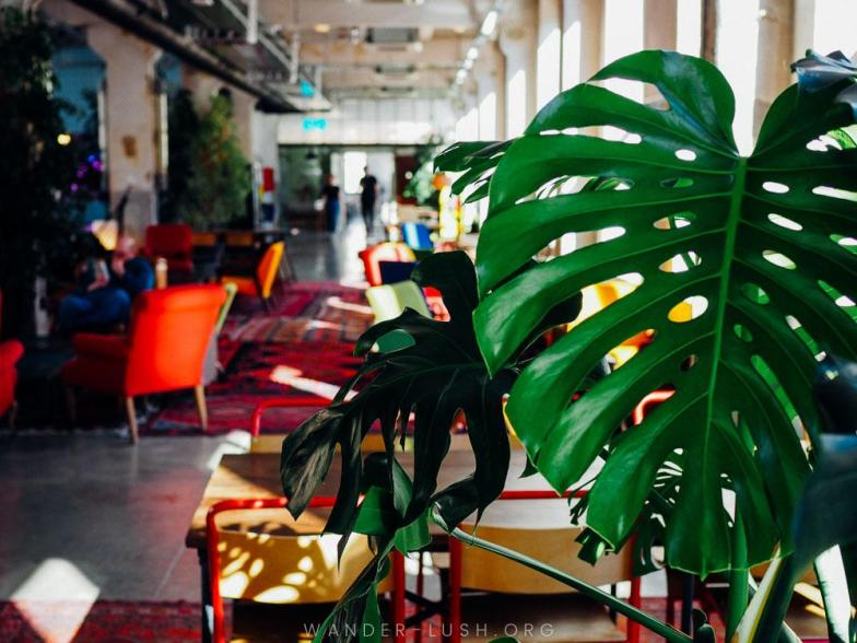 Hotel, bar, breakfast hotspot, shopping mecca, co-working space, creative hub—Fabrika wears many hats. Here's a look inside the best hostel in Tbilisi, Georgia.