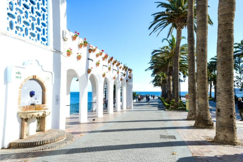 White arches and tall palm trees in Spain.