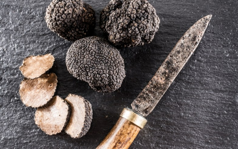 Black truffles on a board with a knife.