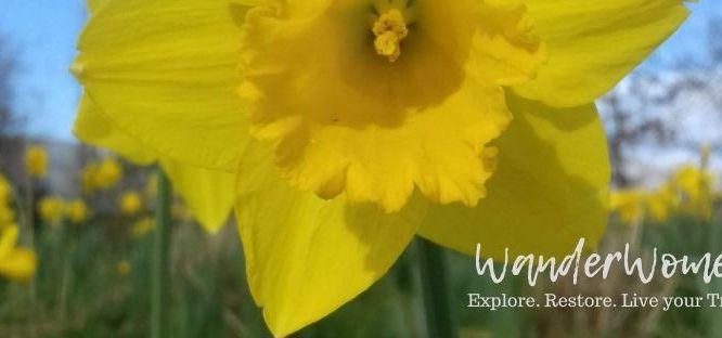 Full Moon & Spring Equinox Celebrations