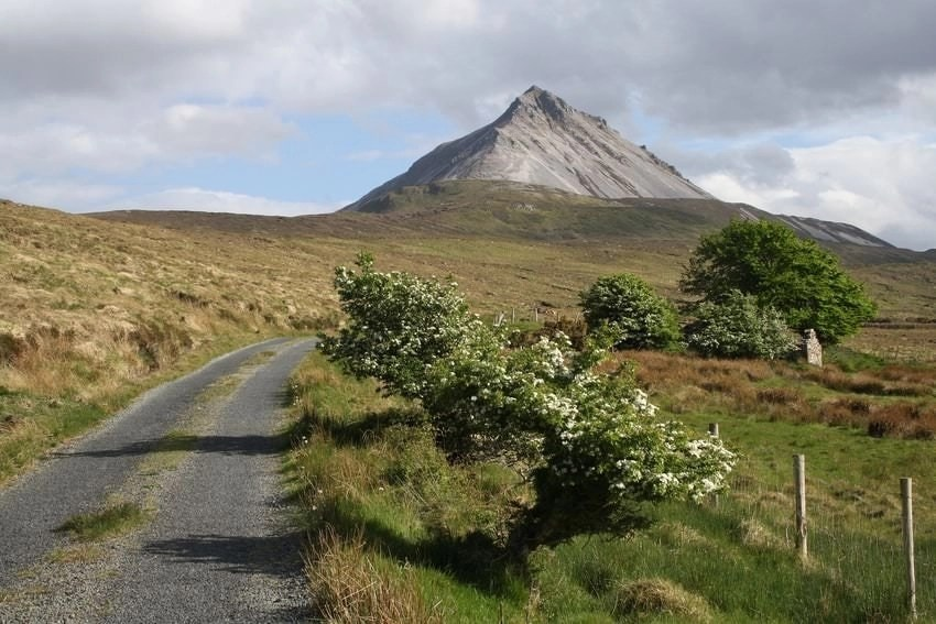 mount errigal in the distance