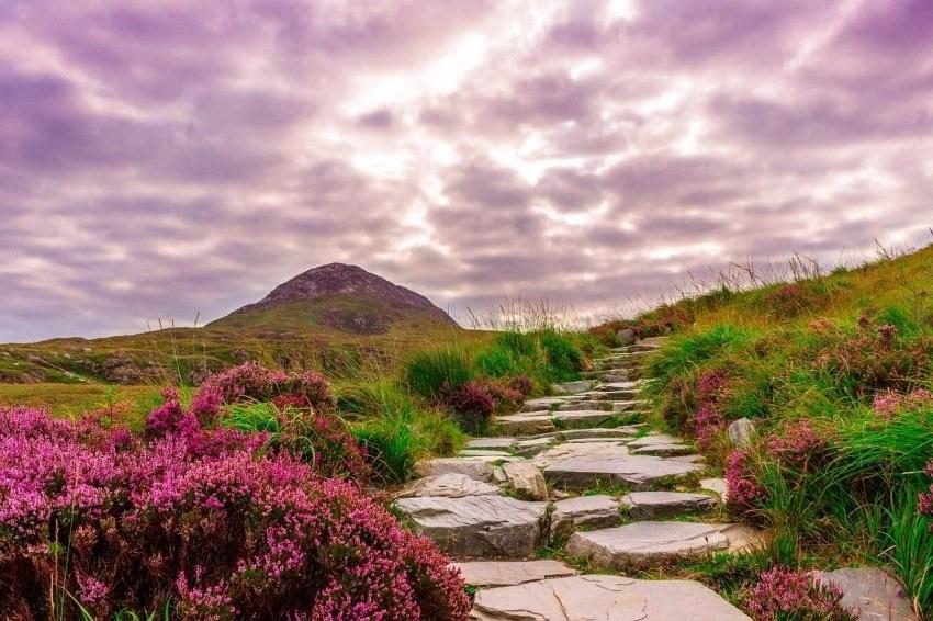 Ireland Mountain