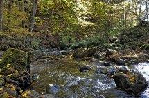 Eifel Strohner Schweiz