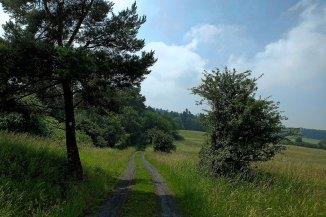 panoramaweg-9162