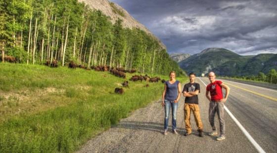 Wir posen vor einer Herde von Bisons. Die stören sich nicht am Lärm