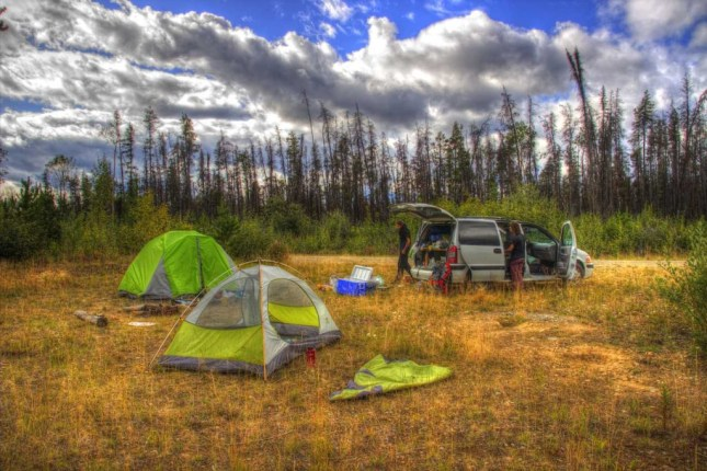 Vom Cassier Highway abgebogen, 200m gefahren und hier campen wir