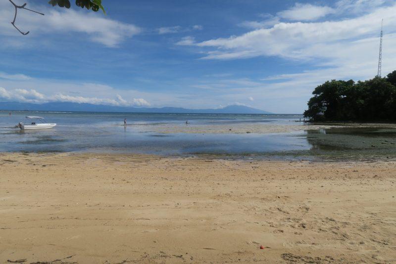 Low Tide in Manuel Uy Beach Resort