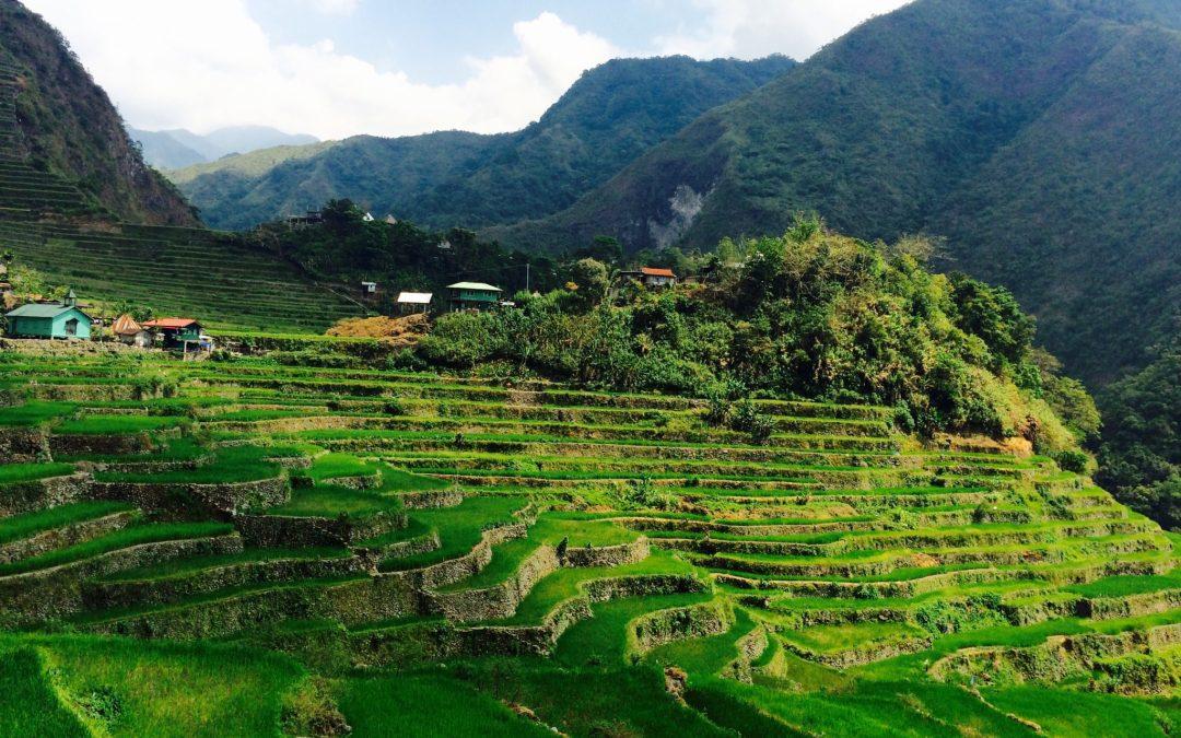 Batad: UNESCO World Heritage Rice Terraces & Tappiya Falls