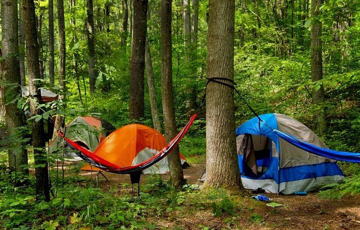 Tents to Hammocks