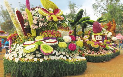 5 Things You Probably Don't Know about the Panagbenga Festival