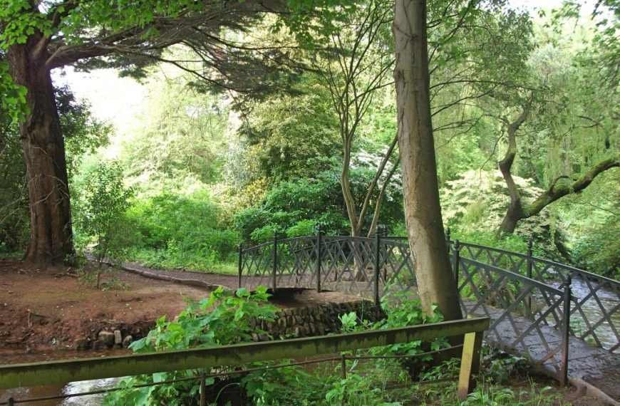Dunster castle and gardens